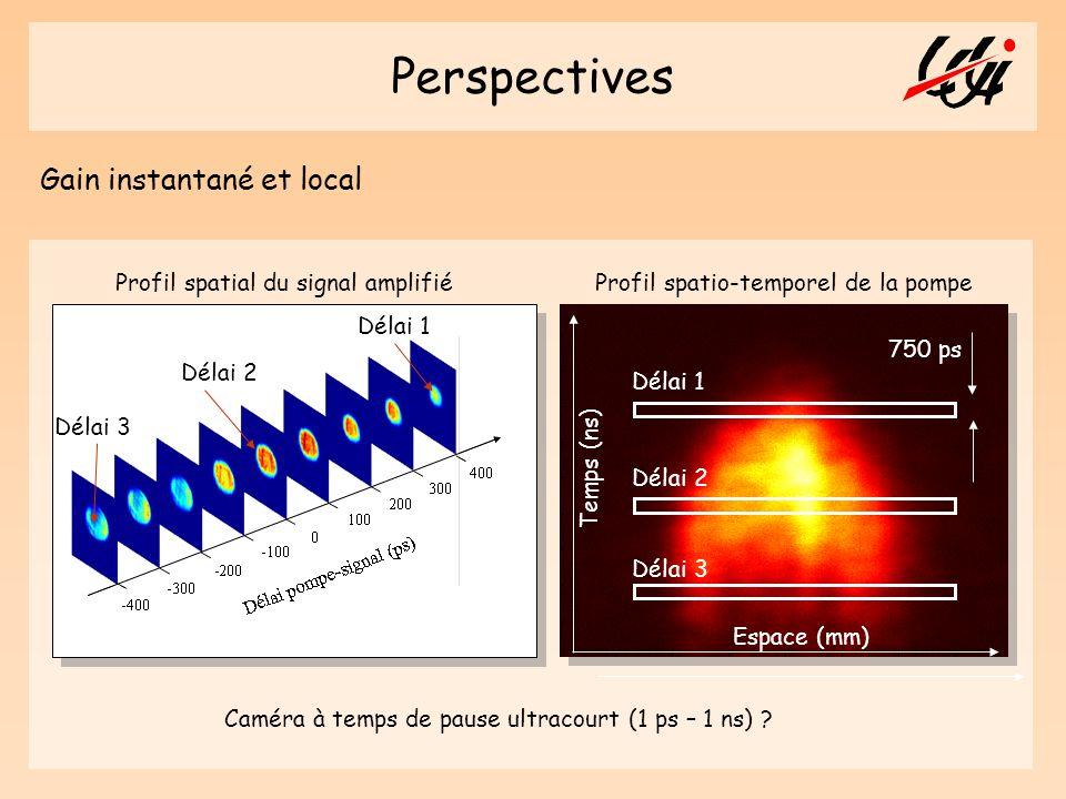 Perspectives Gain instantané et local Profil spatial du signal amplifié Profil spatio-temporel de la pompe Espace (mm) Temps (ns) Délai 1 Délai 2 Déla