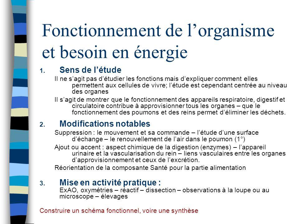 Fonctionnement de lorganisme et besoin en énergie 1. Sens de létude Il ne sagit pas détudier les fonctions mais dexpliquer comment elles permettent au