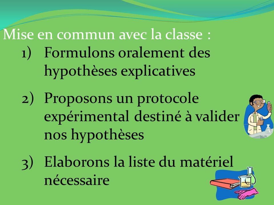Mise en commun avec la classe : 1)Formulons oralement des hypothèses explicatives 2)Proposons un protocole expérimental destiné à valider nos hypothès