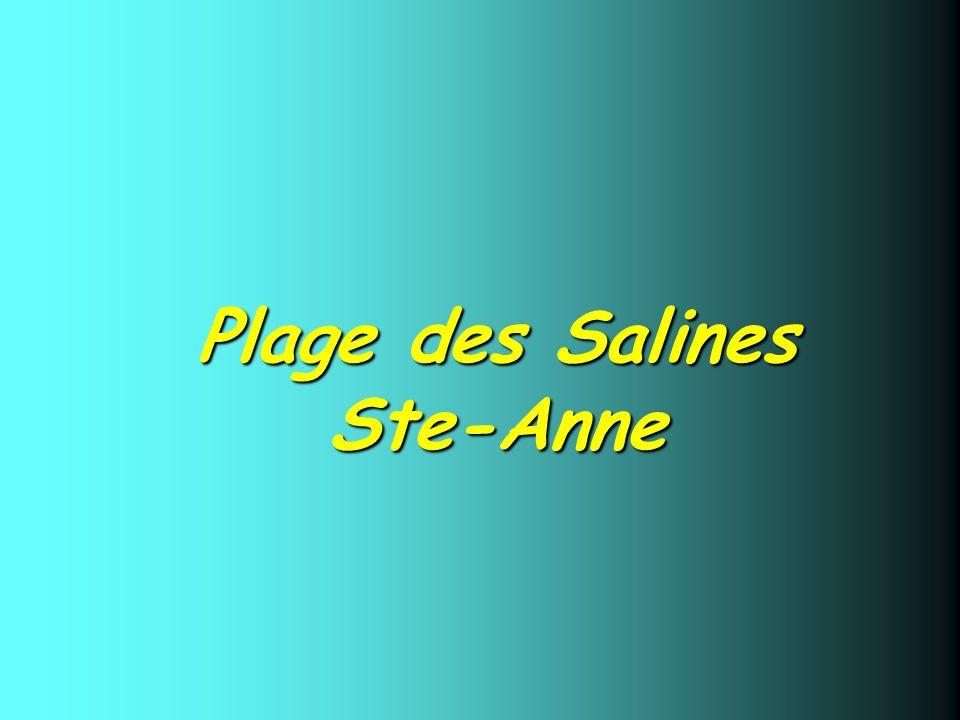 Plage des Salines Ste-Anne