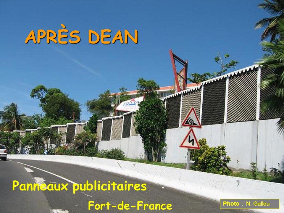 APRÈS DEAN Panneaux publicitaires Fort-de-France Photo : N. Gallou