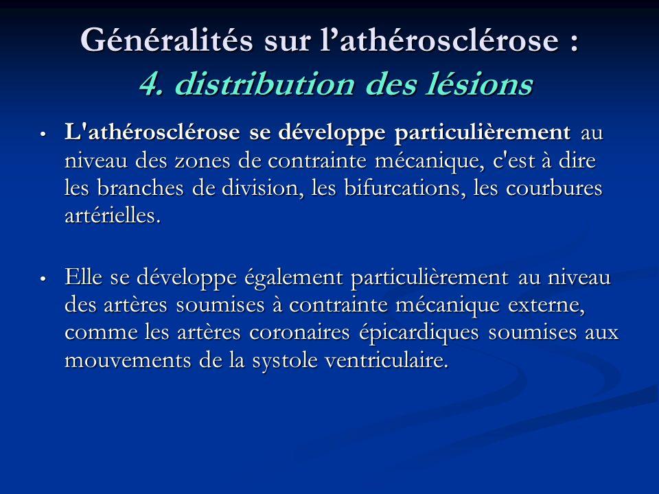 Généralités sur lathérosclérose : 4. distribution des lésions L'athérosclérose se développe particulièrement au niveau des zones de contrainte mécaniq