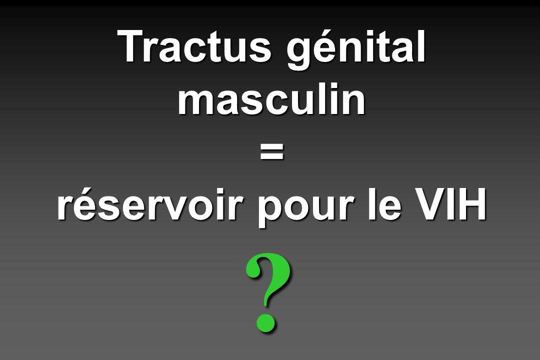 Tractus génital masculin = réservoir pour le VIH ?