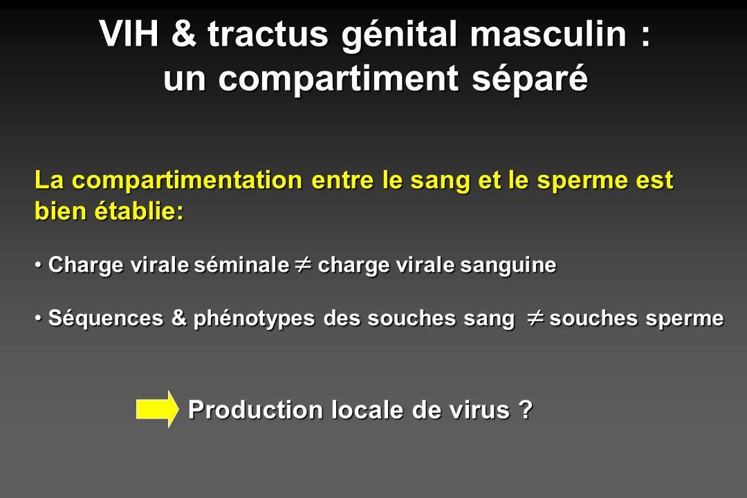 VIH & tractus génital masculin : un compartiment séparé La compartimentation entre le sang et le sperme est bien établie: Charge virale séminale charg