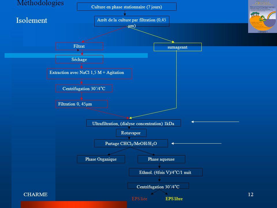 CHARME12 Méthodologies Culture en phase stationnaire (7 jours) Arrêt de la culture par filtration (0,45 µm) Séchage Extraction avec NaCl 1,5 M + Agita