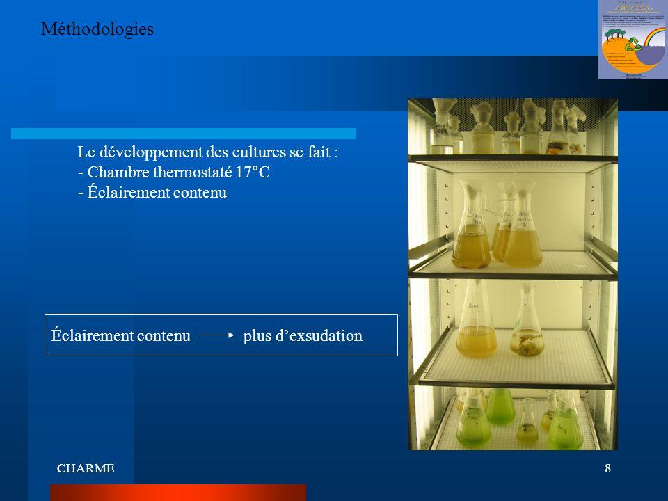 CHARME8 Méthodologies Le développement des cultures se fait : - Chambre thermostaté 17°C - Éclairement contenu Éclairement contenu plus dexsudation