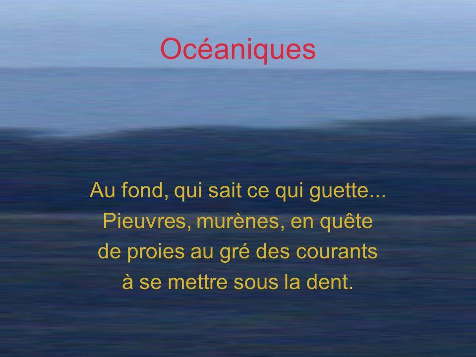Océaniques Au fond, qui sait ce qui guette... Pieuvres, murènes, en quête de proies au gré des courants à se mettre sous la dent.