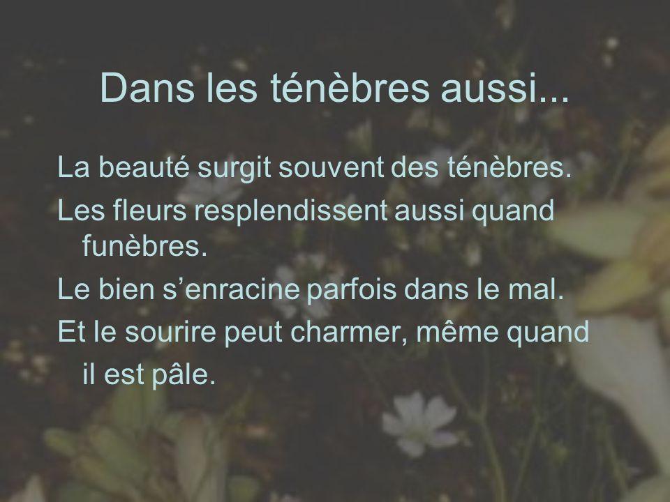 Dans les ténèbres aussi... La beauté surgit souvent des ténèbres. Les fleurs resplendissent aussi quand funèbres. Le bien senracine parfois dans le ma