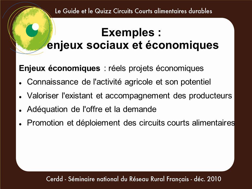 Exemples : enjeux sociaux et économiques Enjeux économiques : réels projets économiques Connaissance de l'activité agricole et son potentiel Valoriser