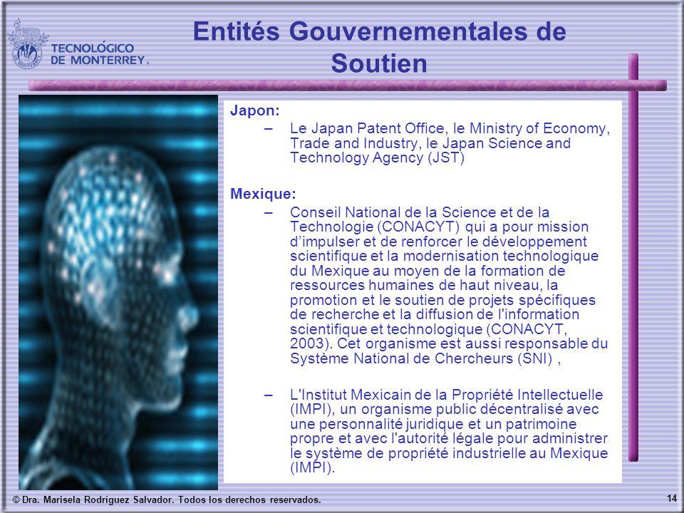 14 © Dra. Marisela Rodríguez Salvador. Todos los derechos reservados. Entités Gouvernementales de Soutien Japon: –Le Japan Patent Office, le Ministry