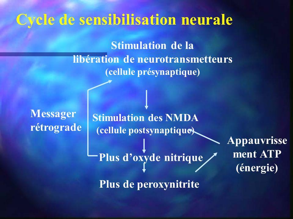 Stimulation de la libération de neurotransmetteurs (cellule présynaptique) Stimulation des NMDA (cellule postsynaptique) Plus doxyde nitrique Plus de