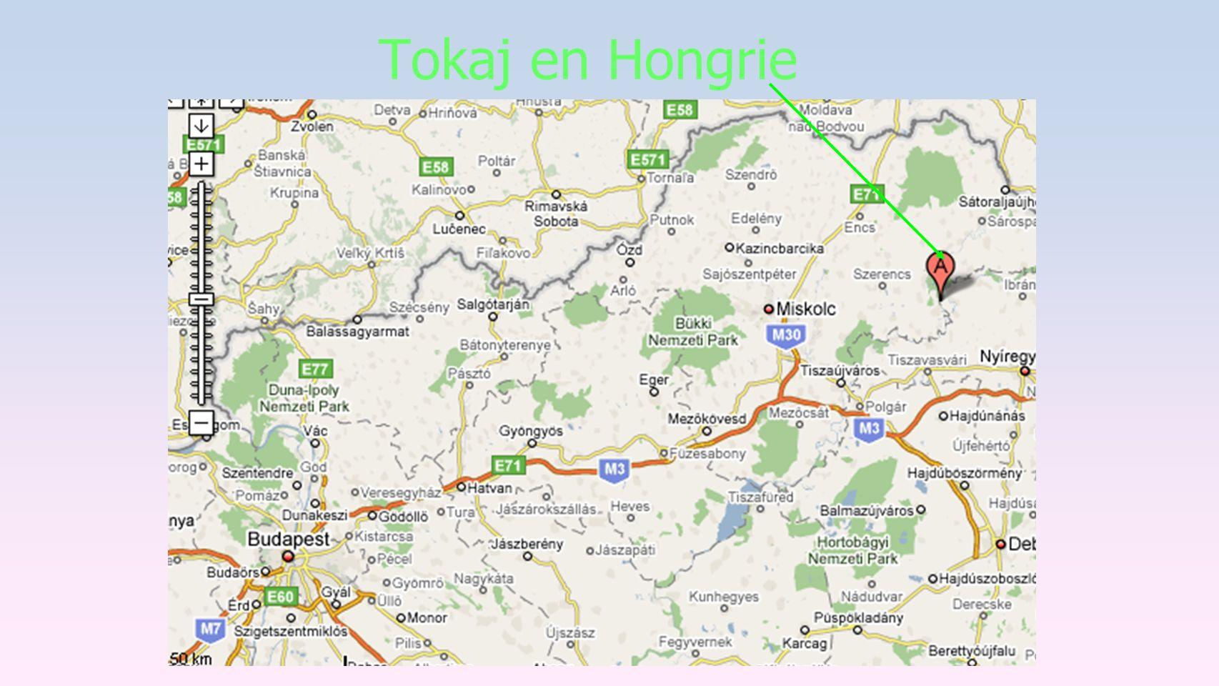 Tokaj en Hongrie