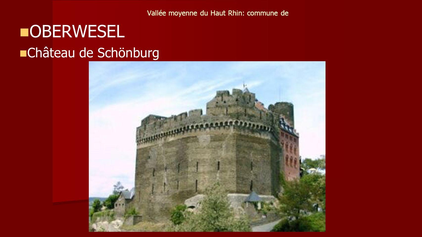 Vallée moyenne du Haut Rhin: commune de OBERWESEL Château de Schönburg