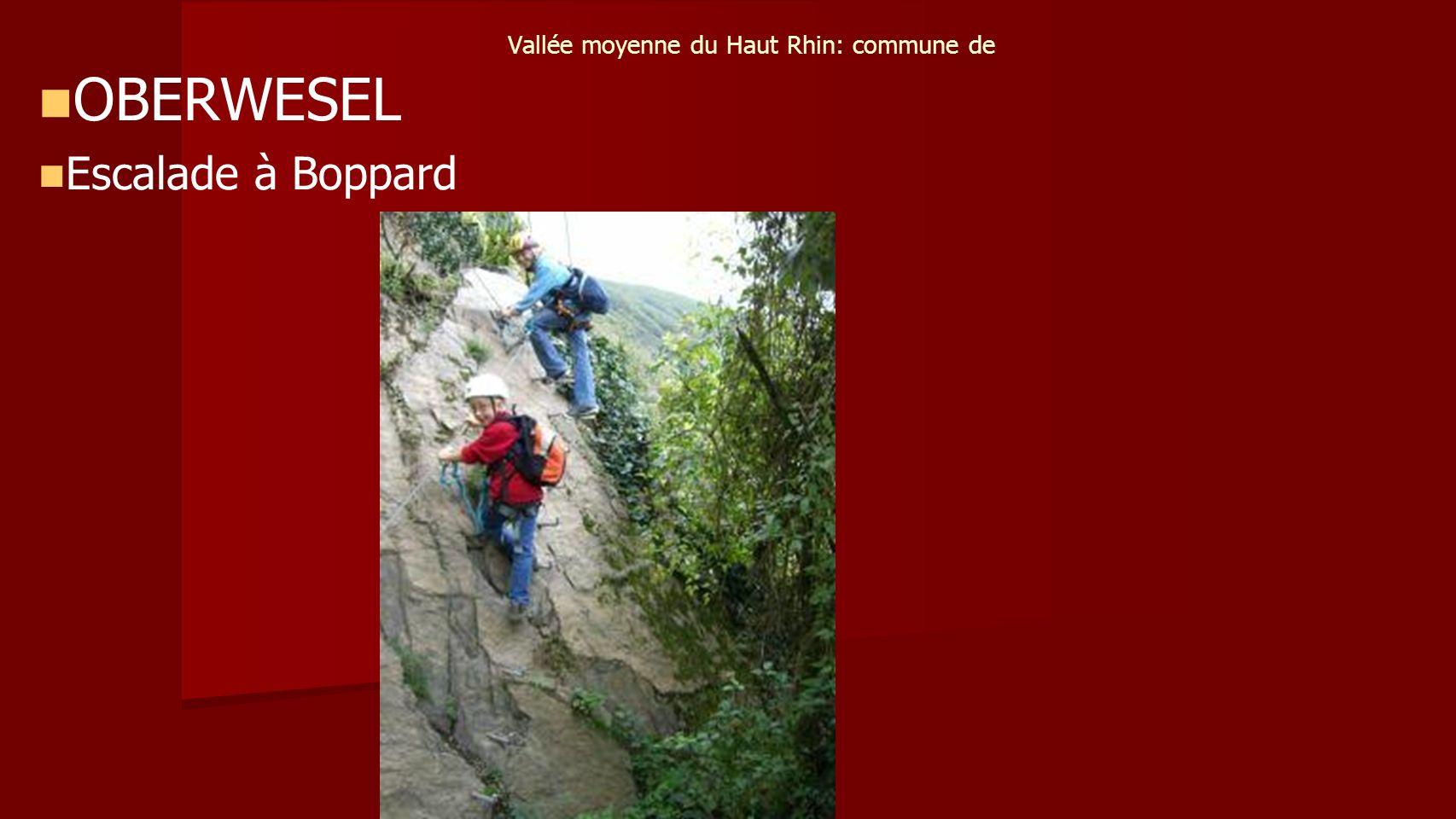 Vallée moyenne du Haut Rhin: commune de OBERWESEL Escalade à Boppard
