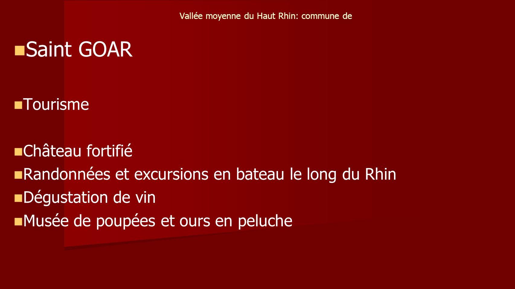 Vallée moyenne du Haut Rhin: commune de Saint GOAR Tourisme Château fortifié Randonnées et excursions en bateau le long du Rhin Dégustation de vin Musée de poupées et ours en peluche