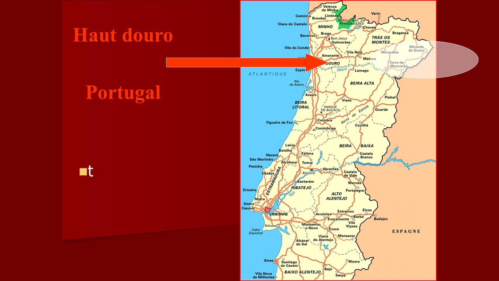 t Haut douro Portugal