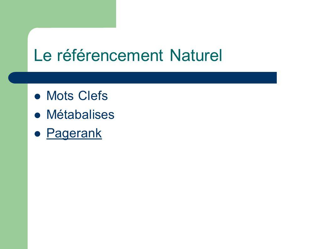 Le référencement Naturel Mots Clefs Métabalises Pagerank