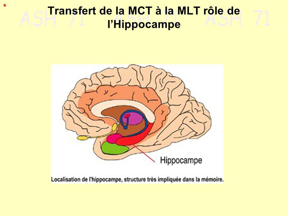Transfert de la MCT à la MLT rôle de lHippocampe *