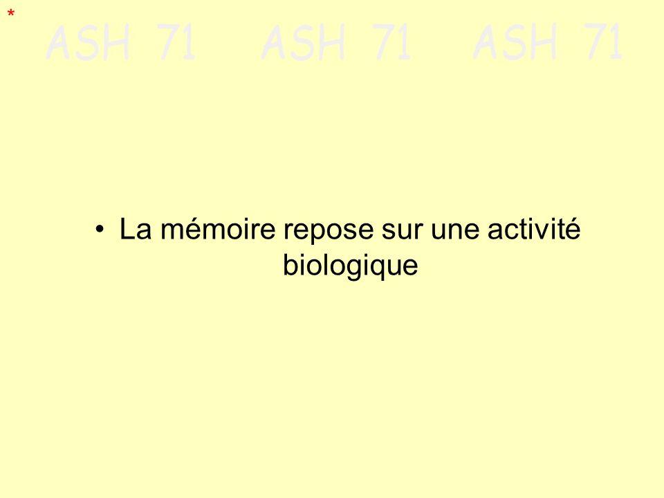 La mémoire repose sur une activité biologique *