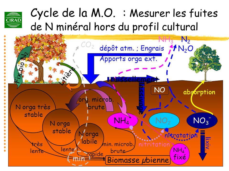 NH 4 + NO 2 - NO 3 - minéralisation N orga très stable N orga stable N orga labile très lente lente rapide Biomasse µbienne Fix bio N 2 Litière dépôt