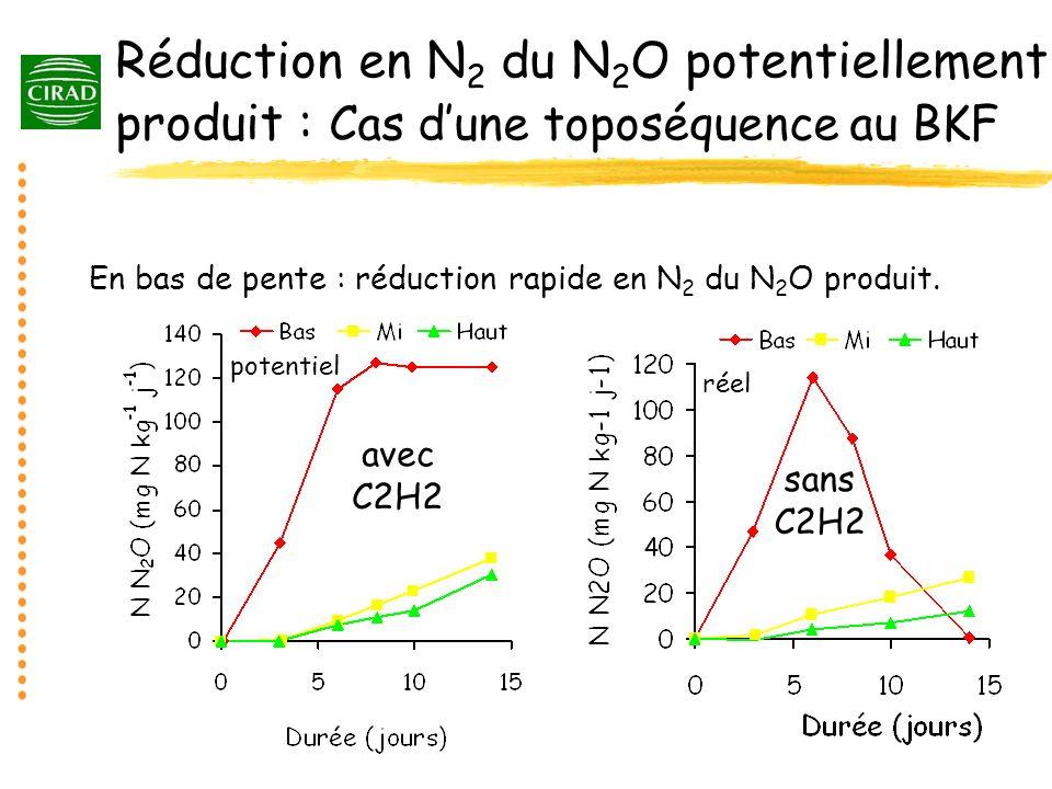 Réduction en N 2 du N 2 O potentiellement produit : Cas dune toposéquence au BKF En bas de pente : réduction rapide en N 2 du N 2 O produit. potentiel