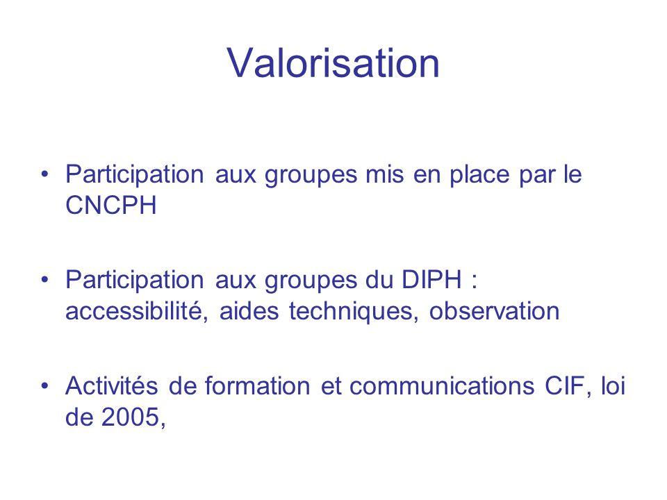 Valorisation Participation aux groupes mis en place par le CNCPH Participation aux groupes du DIPH : accessibilité, aides techniques, observation Activités de formation et communications CIF, loi de 2005,