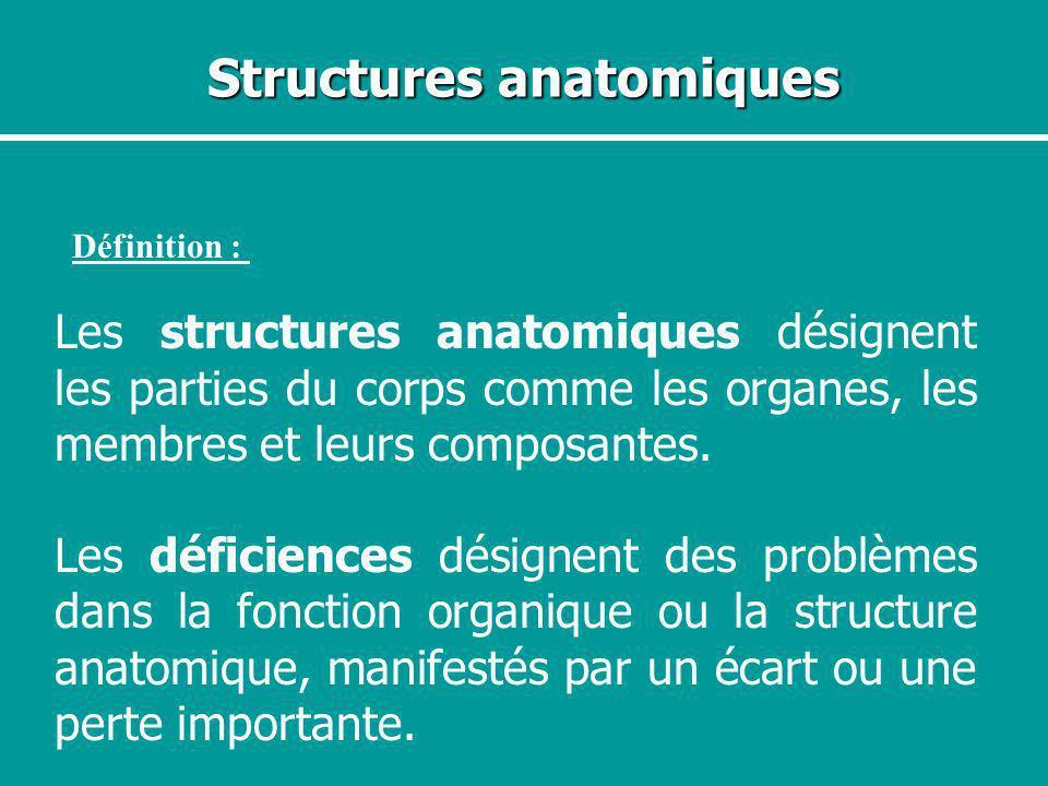Structures anatomiques Définition : Les structures anatomiques désignent les parties du corps comme les organes, les membres et leurs composantes. Les