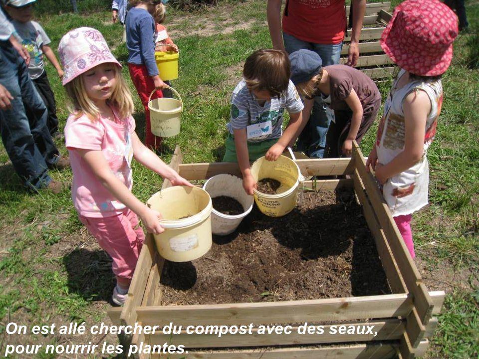 On est allé chercher du compost avec des seaux, pour nourrir les plantes.