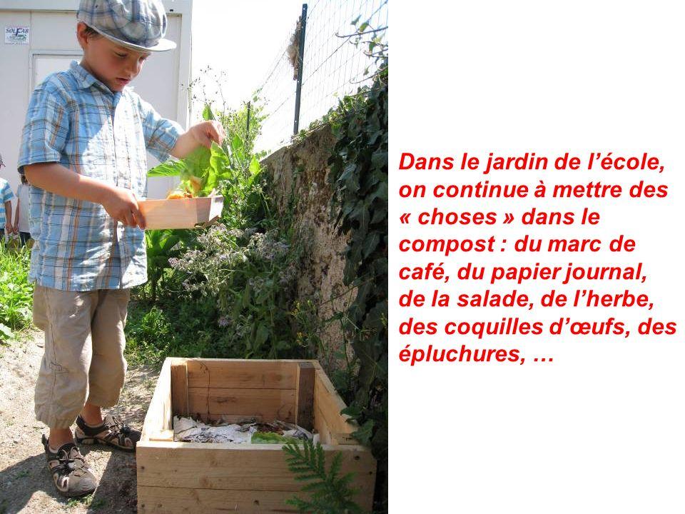 Dans le jardin de lécole, on continue à mettre des « choses » dans le compost : du marc de café, du papier journal, de la salade, de lherbe, des coquilles dœufs, des épluchures, …