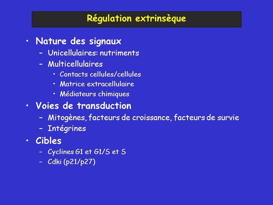 Nature des signaux –Unicellulaires: nutriments –Multicellulaires Contacts cellules/cellules Matrice extracellulaire Médiateurs chimiques Voies de tran