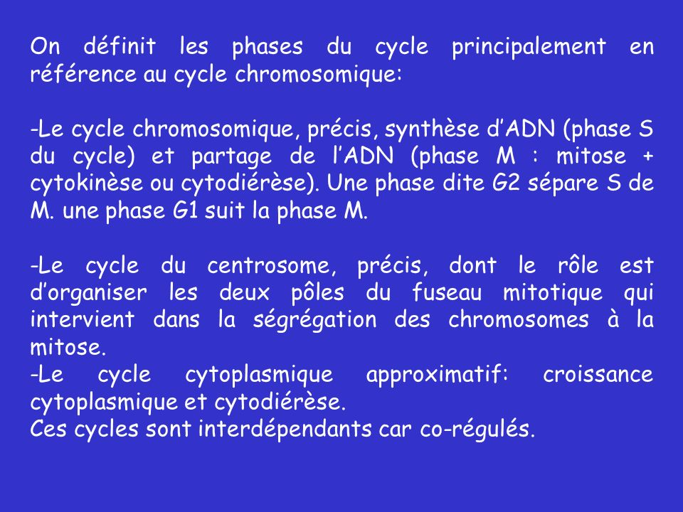 On définit les phases du cycle principalement en référence au cycle chromosomique: -Le cycle chromosomique, précis, synthèse dADN (phase S du cycle) et partage de lADN (phase M : mitose + cytokinèse ou cytodiérèse).
