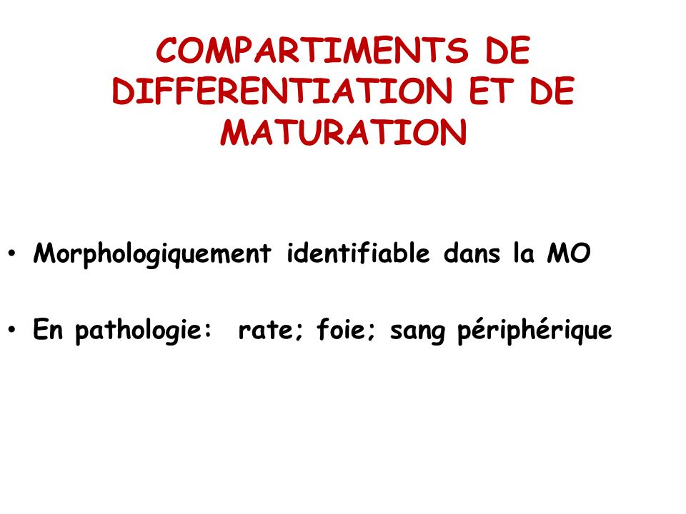COMPARTIMENTS DE DIFFERENTIATION ET DE MATURATION Morphologiquement identifiable dans la MO En pathologie: rate; foie; sang périphérique