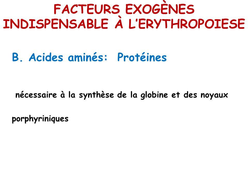FACTEURS EXOGÈNES INDISPENSABLE À LERYTHROPOIESE B. Acides aminés: Protéines nécessaire à la synthèse de la globine et des noyaux porphyriniques