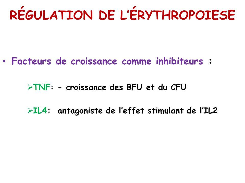RÉGULATION DE LÉRYTHROPOIESE Facteurs de croissance comme inhibiteurs : TNF: - croissance des BFU et du CFU IL4: antagoniste de leffet stimulant de lI
