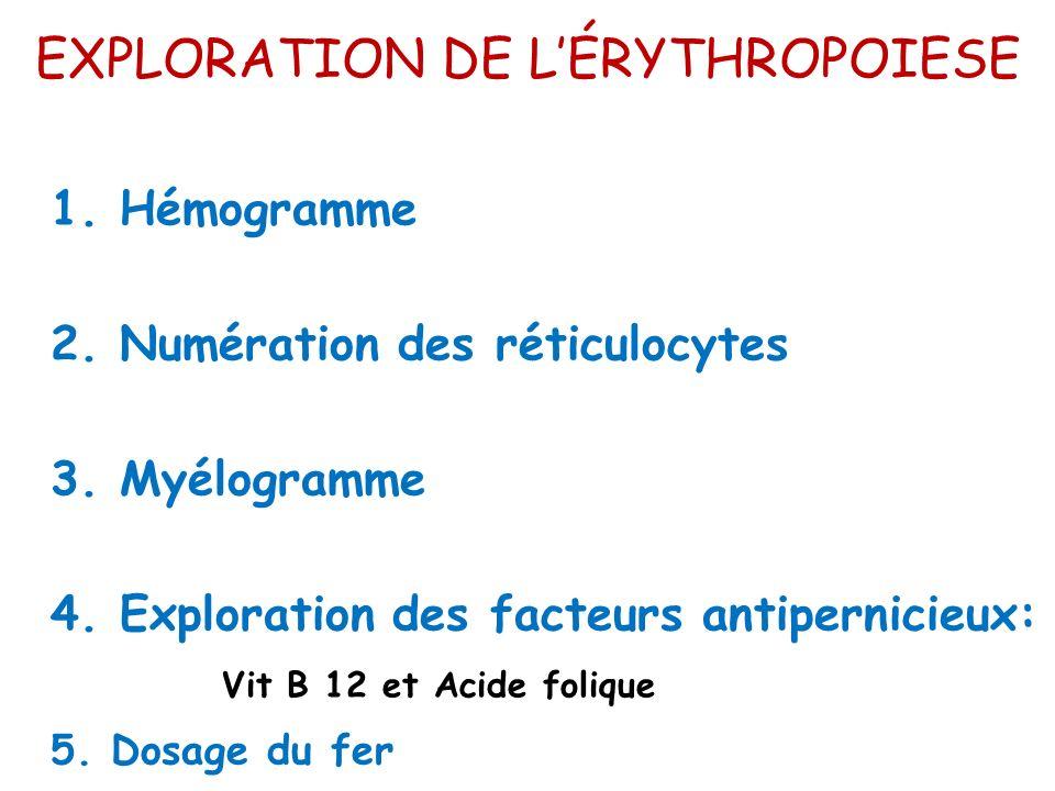 EXPLORATION DE LÉRYTHROPOIESE 1. Hémogramme 2. Numération des réticulocytes 3. Myélogramme 4. Exploration des facteurs antipernicieux: Vit B 12 et Aci