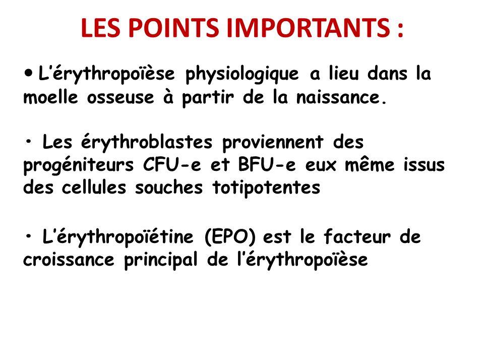LES POINTS IMPORTANTS : Lérythropoïèse physiologique a lieu dans la moelle osseuse à partir de la naissance. Les érythroblastes proviennent des progén
