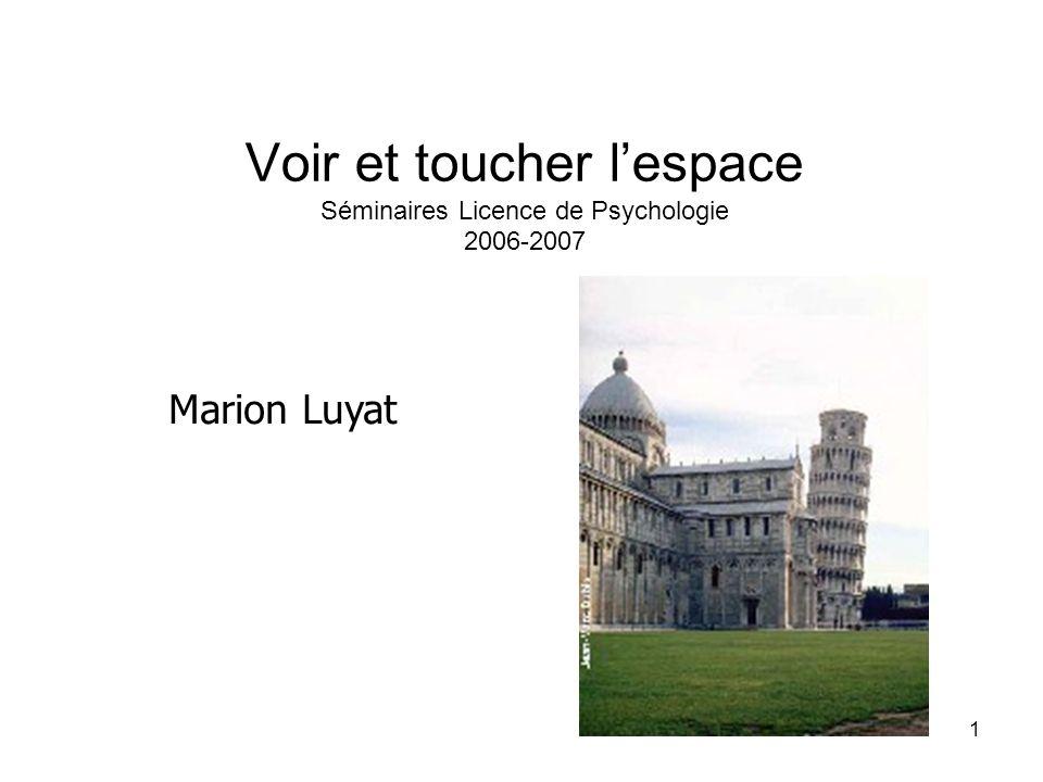 1 Voir et toucher lespace Séminaires Licence de Psychologie 2006-2007 Marion Luyat