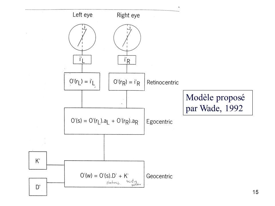 15 Modèle proposé par Wade, 1992