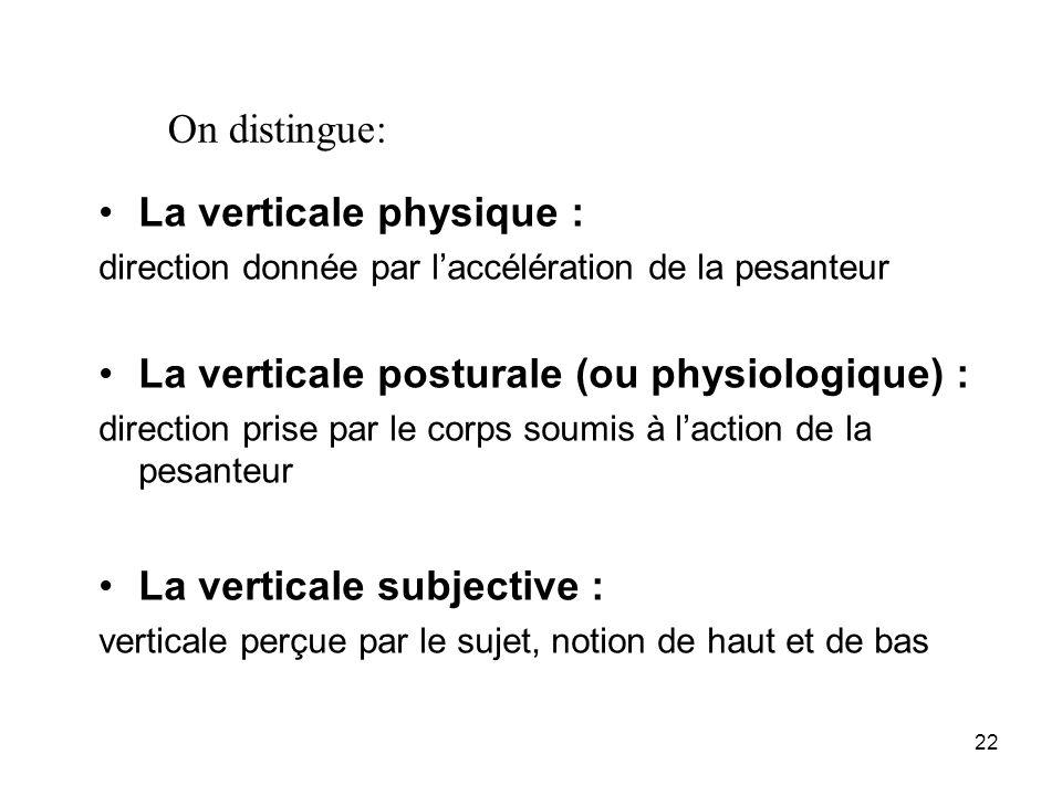 22 La verticale physique : direction donnée par laccélération de la pesanteur La verticale posturale (ou physiologique) : direction prise par le corps