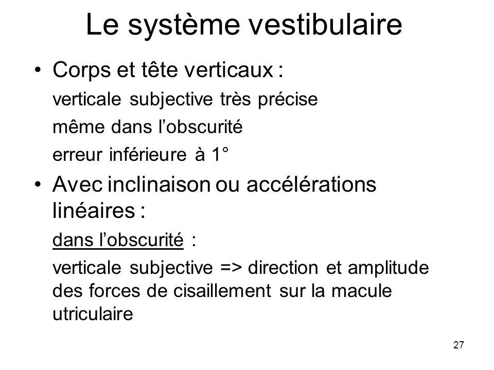 27 Le système vestibulaire Corps et tête verticaux : verticale subjective très précise même dans lobscurité erreur inférieure à 1° Avec inclinaison ou