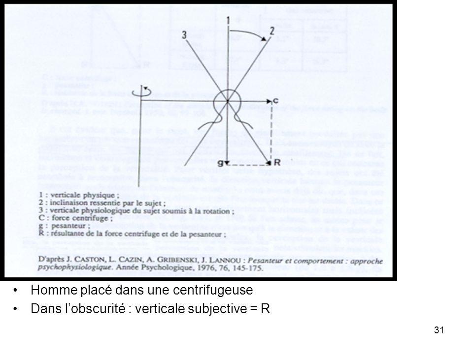 31 Homme placé dans une centrifugeuse Dans lobscurité : verticale subjective = R