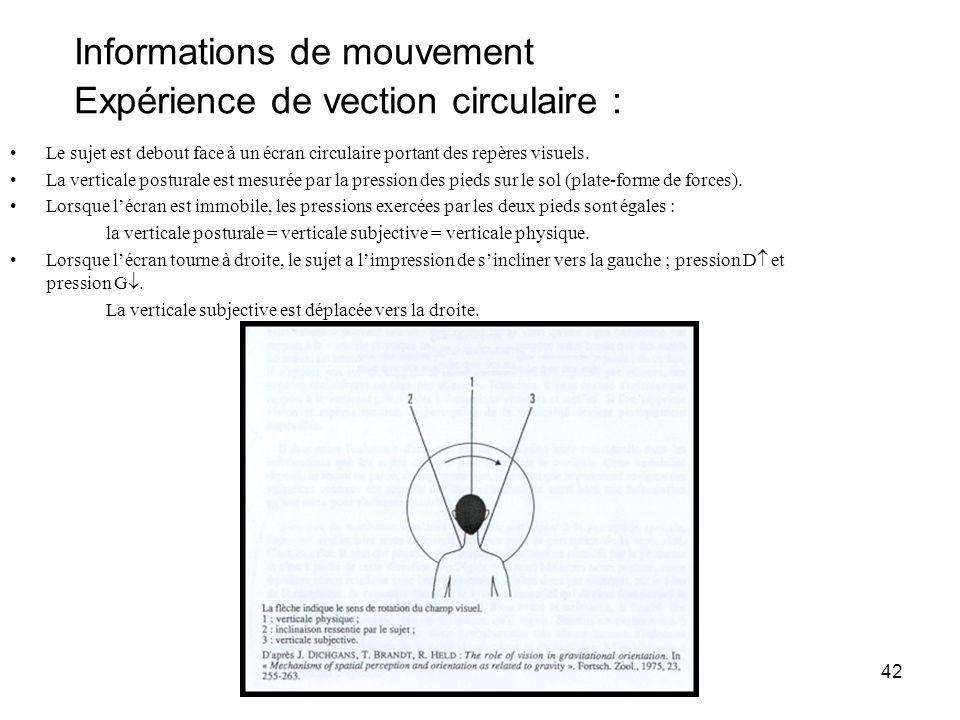 42 Informations de mouvement Expérience de vection circulaire : Le sujet est debout face à un écran circulaire portant des repères visuels. La vertica