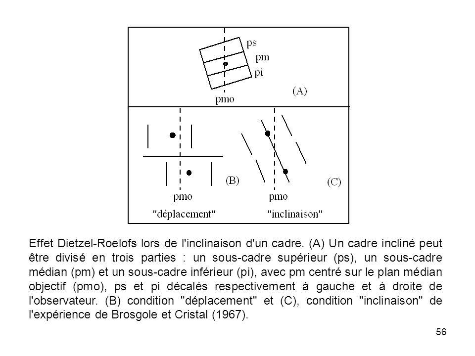 56 Effet Dietzel-Roelofs lors de l'inclinaison d'un cadre. (A) Un cadre incliné peut être divisé en trois parties : un sous-cadre supérieur (ps), un s
