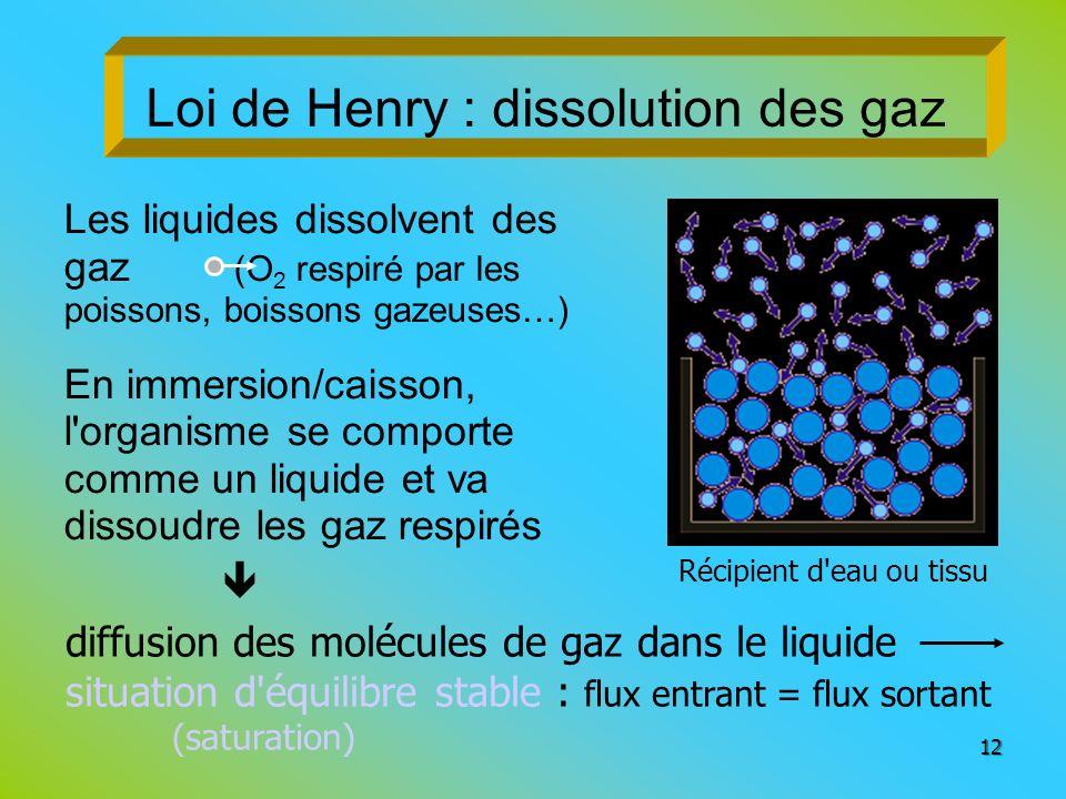 Loi de Henry : dissolution des gaz Les liquides dissolvent des gaz (O 2 respiré par les poissons, boissons gazeuses…) En immersion/caisson, l'organism