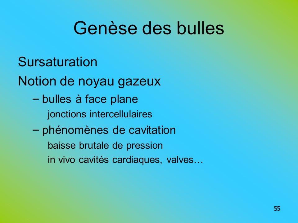 Genèse des bulles Sursaturation Notion de noyau gazeux – bulles à face plane jonctions intercellulaires – phénomènes de cavitation baisse brutale de p