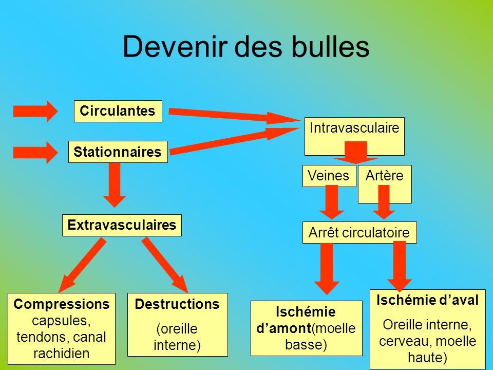 Devenir des bulles 59 Compressions capsules, tendons, canal rachidien Destructions (oreille interne) Ischémie daval Oreille interne, cerveau, moelle h