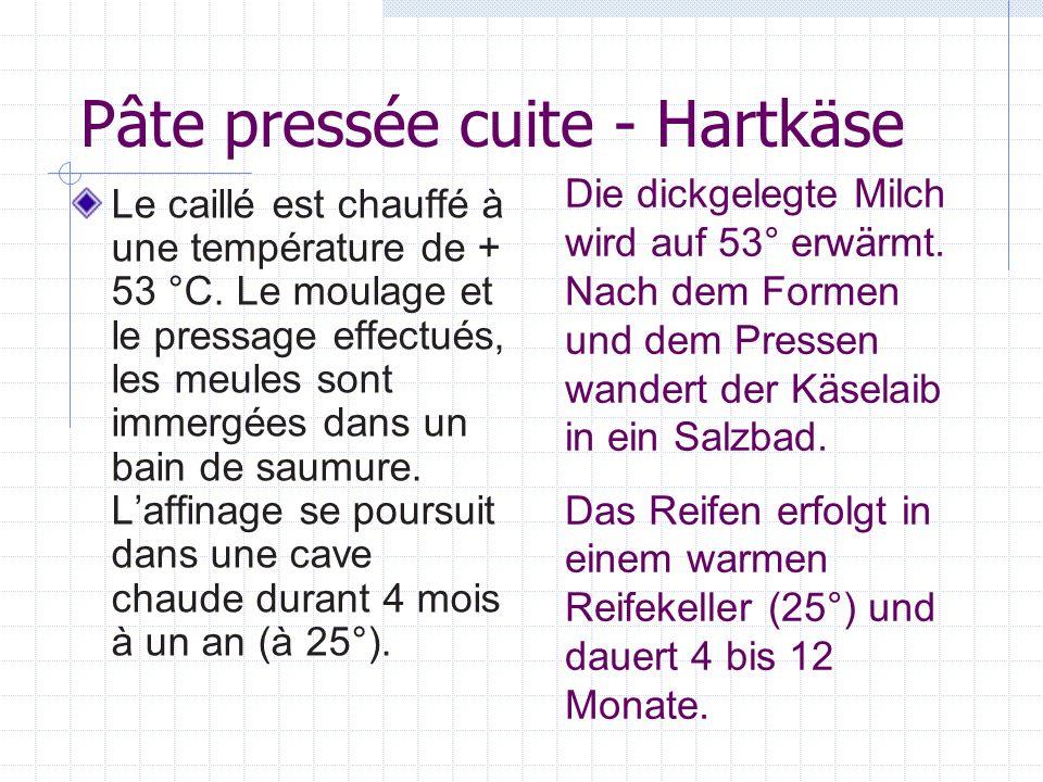 Pâte pressée cuite - Hartkäse Le caillé est chauffé à une température de + 53 °C. Le moulage et le pressage effectués, les meules sont immergées dans