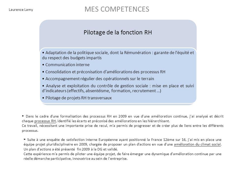Laurence Lamy MES COMPETENCES Divers Supervision dun assistant Gestion dautres marchés depuis 2001 : recrutement, formations internes, évaluations, rémunération Environnement multiculturel – Gestion : -de lEspagne, du Portugal et du Maroc de 2001 à 2003 - de la Pologne et de la Hongrie de 2004 à 2006 - du Luxembourg, de lEspagne et du Portugal de 2007 à 2010 Membre actif de léquipe RH Europe (Allemagne, Angleterre, Italie, Pays-Bas, Russie et France) Reporting au DG France et au Vice Président Ressources Humaines Europe basé en Angleterre : organisation matricielle