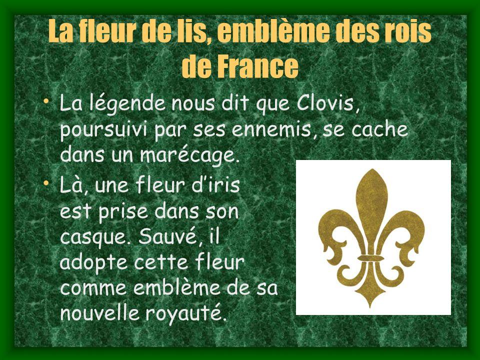 La fleur de lis, emblème des rois de France La légende nous dit que Clovis, poursuivi par ses ennemis, se cache dans un marécage.