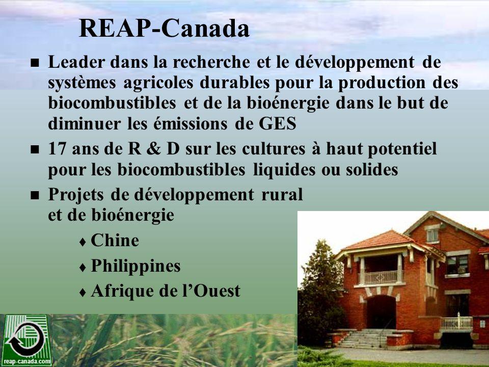 reap-canada.com Dégagement de chaleur Déviations de gazes à effets de serre Combustible fossileCarburants renouvlablesDéviation net (%) kg CO 2 e/GJ Charbon93.1 Granules de panic érigé 8.291 GNL87.9 Granules de panic érigé 8.289 Gaz naturel57.6 Granules de panic érigé 8.286 Samson et al., 2008